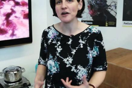 VIDEO: Melissa Grant Fellows Talk 2016