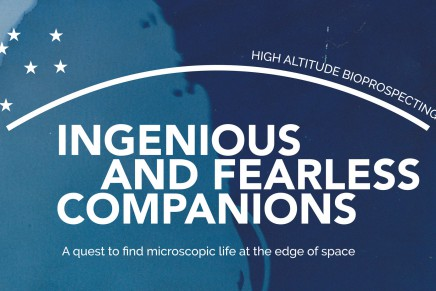 Ingenious and Fearless Companions
